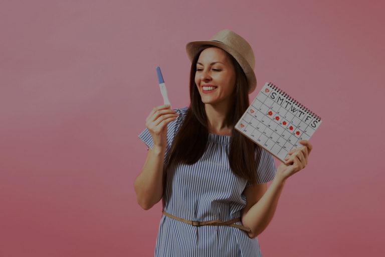 comprendre l'ovulation et son cycle de fécondation
